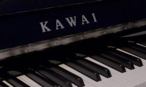 Danh sách các cây đàn piano cơ được yêu thích tại Việt Nam