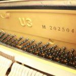 Cách tìm số serial trên cây đàn Grand piano