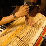 Bạn cần tìm hiểu về phiếu bảo hành khi mua đàn piano
