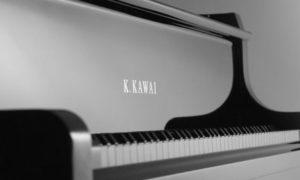 Top 3 đàn piano cơ HOT nhất năm 2019