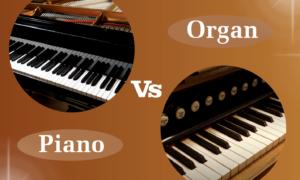 Dùng đàn organ để học đàn piano có được không?