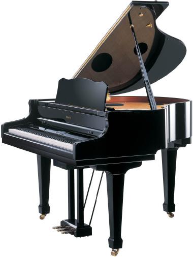 2005-piano-dien-roland-RG-7